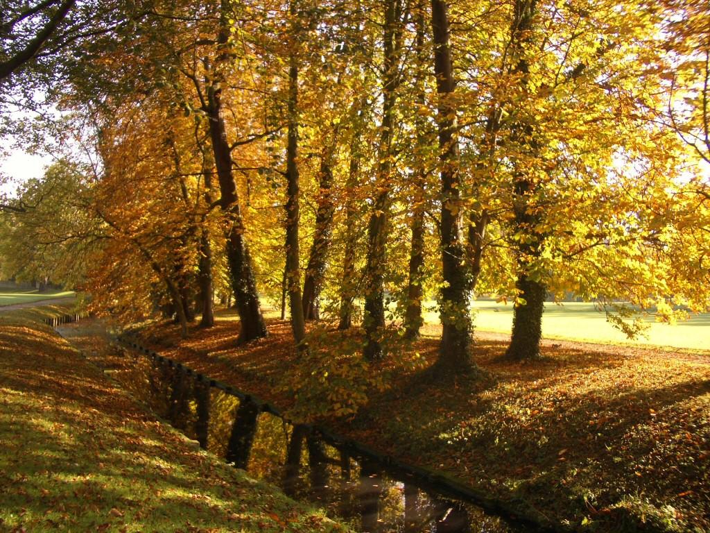 Stiže jesen Herbst